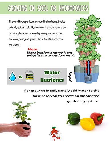 Smart Farm - Automatic Self Watering Garden - Grow Fresh Healthy Food Virtually Anywhere Year Round - Soil or Hydroponic Vertical Tower Gardening System By Mr Stacky (Standard Kit, Stone) by Mr. Stacky (Image #5)