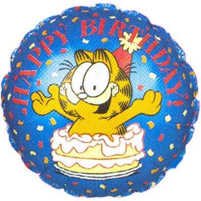 18 Garfield Birthday Cake
