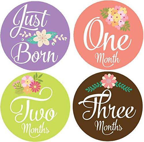 Belly Doodles 16 Baby Month Stickers Flowers (Cards 1 Sticker And)