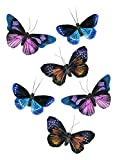 Set of 6 Large Natural Feather Butterflies with Clip 4.75 inch for Home Decoration, Floral Arrangements, Wreaths and Arts & Crafts
