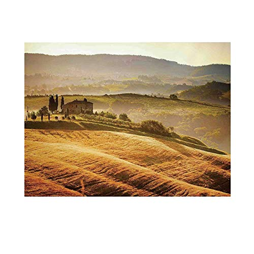 Tuscan Photography Background,Siena Tuscany Retro Farm House Trees Old Path Country Landscape on Sunset Backdrop for Studio,10x10ft