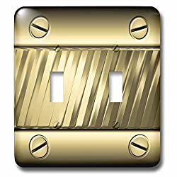 Charlyn Woodruff - CW Designs Faux Metal - Cool Faux Gold Tone Metal Plate with Screws Image - Light Switch Covers - double toggle switch (lsp_242417_2)