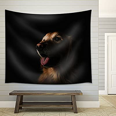 Charming Picture, Portrait of a Cute Dog in The Dark Fabric Wall, Made to Last