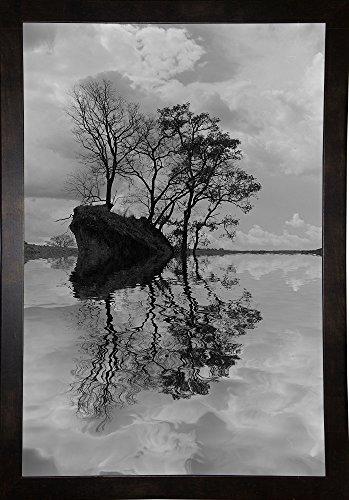 Arboles en Agua 8 BN Framed Print 37.8''x25.2'' by Moises Levy by Frame USA