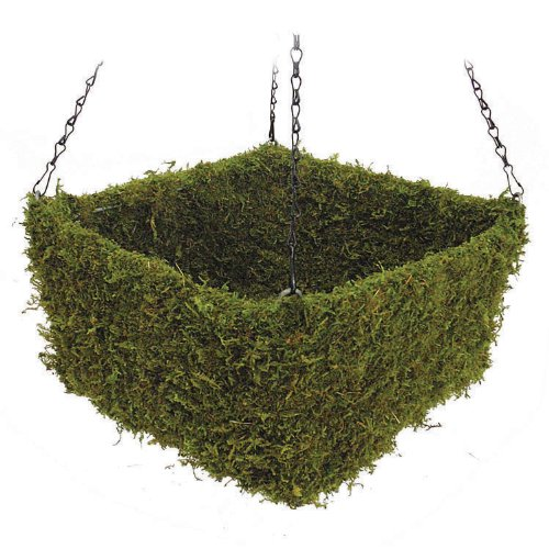Super Moss 29311 Preserved Moss Square Hanging Basket, Spring Green, Medium by Super Moss