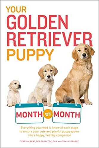 Your Golden Retriever Puppy Month By Month Everything You Need To Know At Each Stage To Ensure Your Cute And Playful Puppy Your Puppy Month By Month