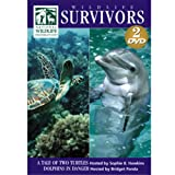 Wildlife Survivors: A Tale of Two Turtles/Dolphins in Danger