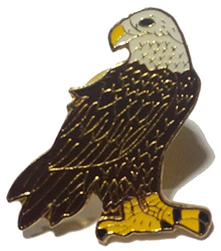 Bold Eagle Pin