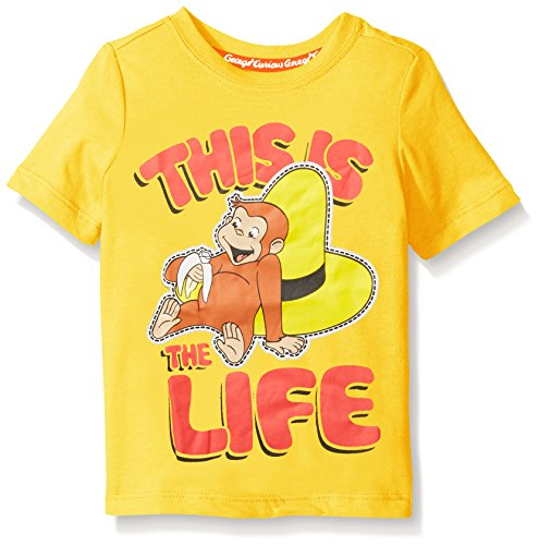 Curious George Little Boys' Toddler Short Sleeve Graphic T-Shirt, Yellow, 5T