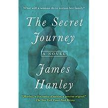 The Secret Journey: A Novel (The Furys Saga Book 2)