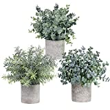 Winlyn Set of 3 Mini Potted Artificial Eucalyptus
