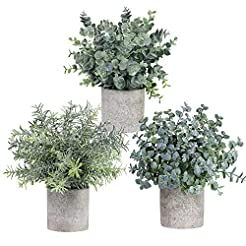 Winlyn Set of 3 Mini Potted Artificial E...
