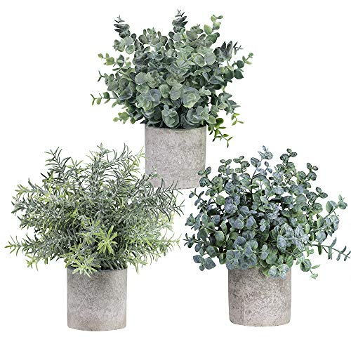 Winlyn Set of 3 Mini Potted Artificial Eucalyptus Plants Plastic Fake Green Rosemary Plant for Home Decor Office Desk Shower Room Decoration (Table Home Decor)