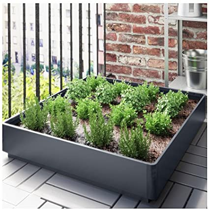 IKEA SALLADSKÅL Bandeja gris decoración exterior jardin o terraza para plantar o apilar macetas: Amazon.es: Jardín