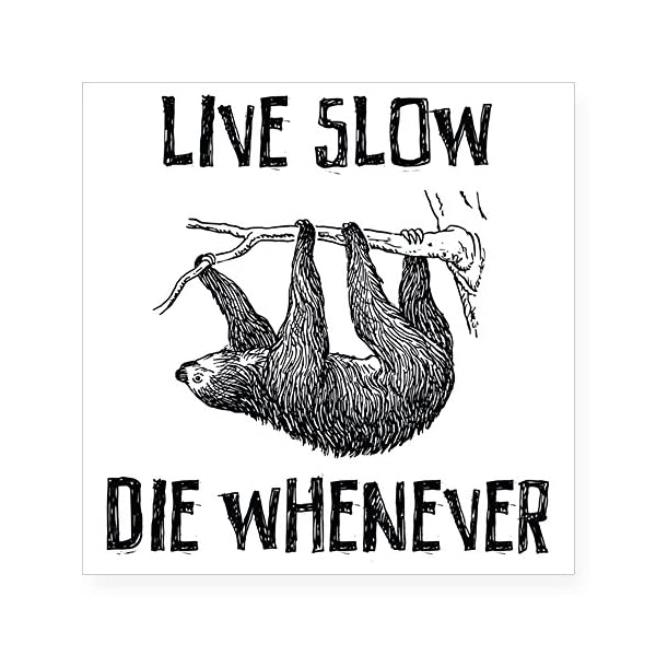 Cafepress Live Slow. Die Whenever Square Sticker 3&Quot; X 3&Quot; Square Bumper Sticker Car Decal, 3&Quot;X3&Quot; (Small) Or 5&Quot;X5&Quot; (Large) -