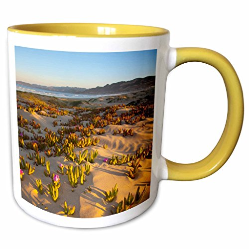 3dRose Danita Delimont - California - Sunrise, dunes at Pismo Beach, California - US05 CHA0076 - Chuck Haney - 11oz Two-Tone Yellow Mug - Pismo Outlet Beach