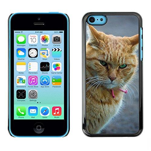 Premio Sottile Slim Cassa Custodia Case Cover Shell // F00009833 chat // Apple iPhone 5C