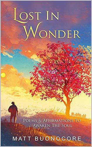 Lost In Wonder by Matt Buonocore & Alaina DaRin ebook deal