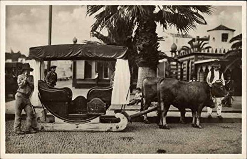 Drawn Sled - Ox Drawn Sled Madeira, Portugal Original Vintage Postcard