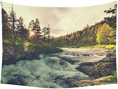 INTERESTPRINT Woodland Nature Wall Art Home Decor, River in Norway Tapestry Wall Hanging Art Sets 80 X 60 Inches