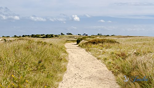 Photograph ~ Stage Harbor Path ~ Chatham, MA ~ Cape Cod