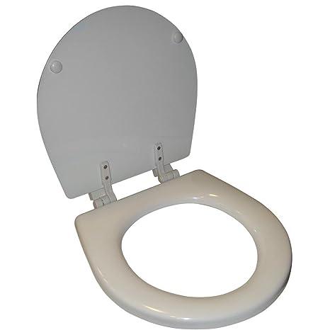 Pleasing Raritan Standard Bowl Seat Cover White Toilet Seats Evergreenethics Interior Chair Design Evergreenethicsorg