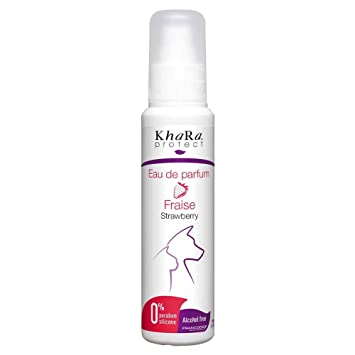 Francodex Agua de Perfume de Fresa para Perros 100 ml: Amazon.es: Productos para mascotas