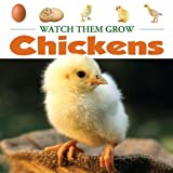 Chickens, Judy Wearing, 1605969133