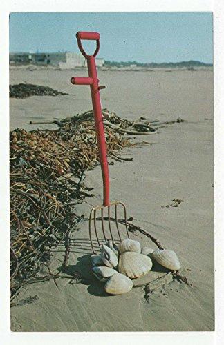 Pismo Beach, California Vintage Original Postcard #3358 - - Beach Pismo Stores