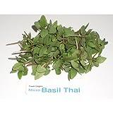 Micro Greens - Thai Basil - 4 x 4 oz