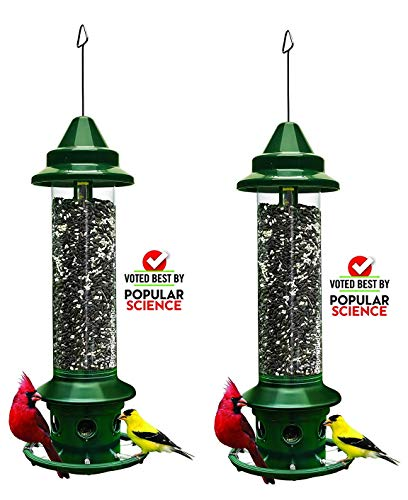 2 Pack Brome Squirrel Buster Plus Bird Feeder w/ Cardinal Perch Ring 1024 - Squirrel Proof