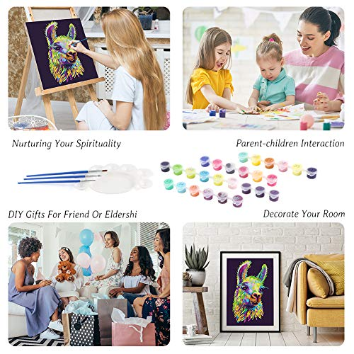 DIY Oil Painting Kit, 16 x 20 inch Paint by Numbers Canvas and Acrylic Paints Animals Painting for Adults Kids Beginner DIY Craft Project Home Living Room Decor, Alpaca
