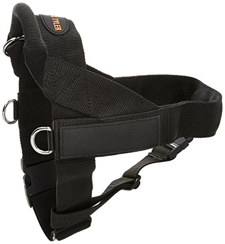dean and tyler harness small - 8