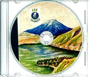 Seabees 136th Battalion World War II Memory Book NCB 136
