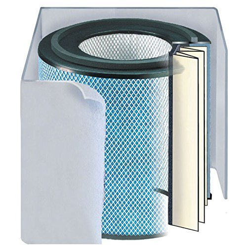 Hega Air Cleaner (Austin Air Allergy Machine (HEGA) Replacement Filter w/ Prefilter (Light-colored))