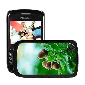 Print Motif Coque de protection Case Cover // M00153679 Antecedentes de la bellota otoñal otoño // Blackberry 8520 9300