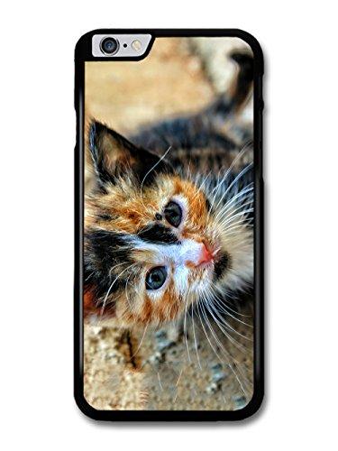 Cute Funny Kitten Cat Photograph Design case for iPhone 6 Plus 6S Plus