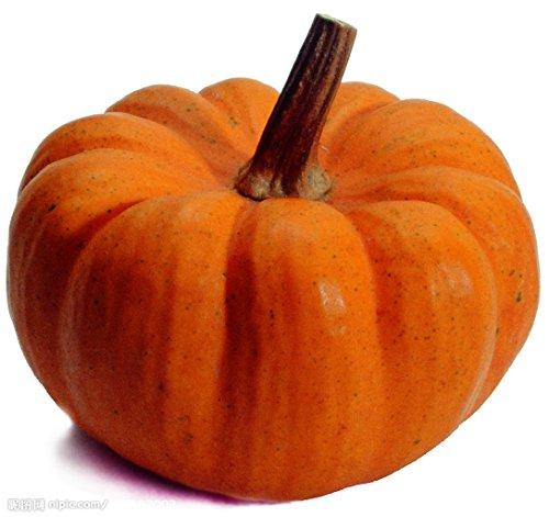(50 Fairytale Pumpkin Cucurbita Moschata Organic Vegetables Seeds ~Chris's garden )
