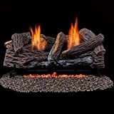 Astonishing Top 10 Best Rated Vent Free Gas Logs In 2019 Reviews Download Free Architecture Designs Sospemadebymaigaardcom