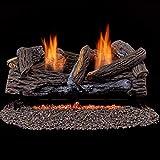 Duluth Forge Ventless Propane Set 24 in. Split Red Oak-Manual Control Gas logs