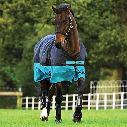 - AMIGO Mio Turnout Blanket Medium 75 Black