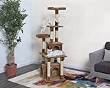Go Pet Club Cat Condo - 67-Inch - Brown