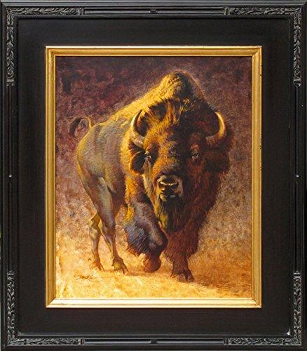 American Bison Bull (Bison American Bull)
