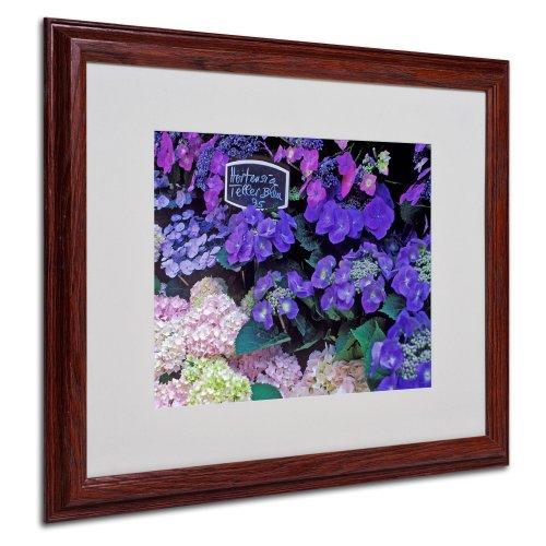 - Paris Flower Market Hydrangeas Framed Art by Kathy Yates, Wood Frame, 16 by 20-Inch