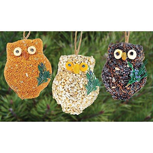 Mr. Bird Owl Bird Seed Ornaments - Bird Seed Cakes (Set of 3) - 3.75