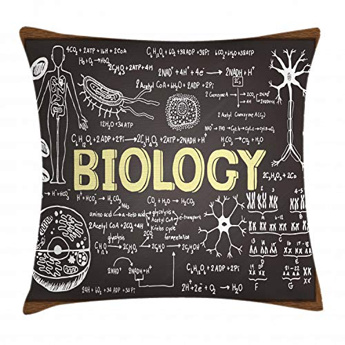 Ambesonne Educational Throw Pillow Cushion Cover, Black Chalkboard Biology Hand Written Symbols School Classroom, Decorative Square Accent Pillow Case, 18 X 18 Inches, Black Brown Pale Yellow