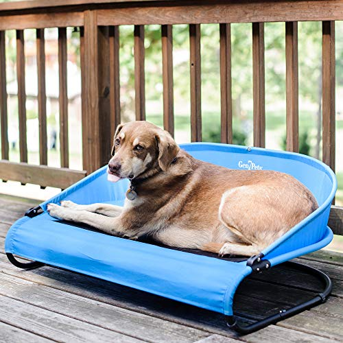 Gen7Pets Cool Air Cot Pet Bed for Dogs and Cats 60lbs – Curved Raised Back, Air Flow for Comfort and Portable for Travel