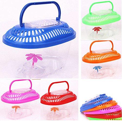 Calli Aquarium Plastic Handle Container Insect Reptile Portable Box