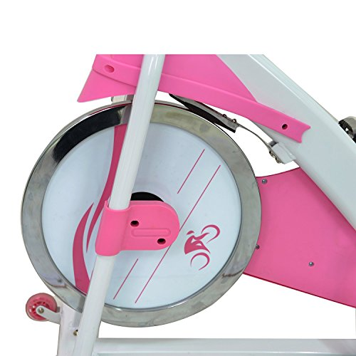 Gold S Gym Drive Belt Replacement: Sunny Health & Fitness P8150 Belt Drive Premium Indoor