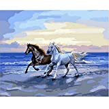 SUBERY DIY Oil Painting Paint by Numbers Kits for Adults Kids Beginner - Two Horses Running Wild 16x20 inches (Frameless)
